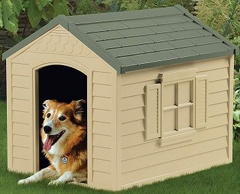 Suncast DH250 Deluxe Dog House review