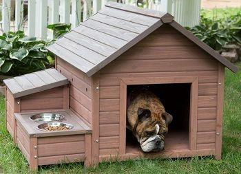 Boomer & George A-Frame Dog House