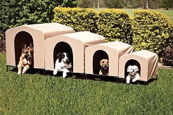 Heininger 3096 PortablePET House and Shelter review