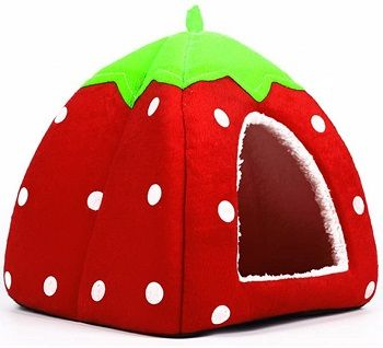 Spring Fever Small Strawberry Dog Indoor House