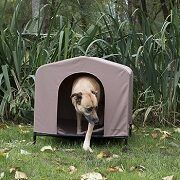 Top 5 Portable Dog Houses (Indoor & Outdoor) In 2021 Reviews