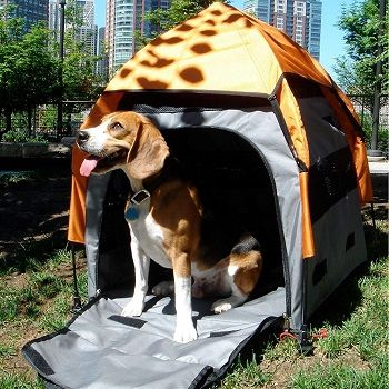 dog-tent-house