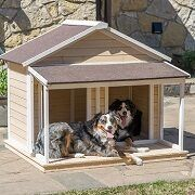 Best 5 Big, Large & XL Dog Houses For Sale In 2021 Reviews