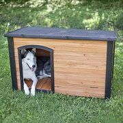 Best 5 Dog Houses For Big & Large Dogs To Buy In 2021 Reviews