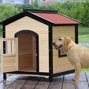 Best 5 Dog Houses With Doors On The Market In 2021 Reviews