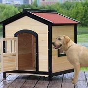 Best 5 Dog Houses With Doors On The Market In 2020 Reviews