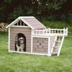 Best 5 Fancy, Luxury & Modern Dog Houses In 2020 Reviews