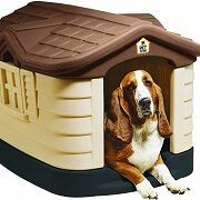 Best 5 Insulated Dog Houses To Choose From In 2021 Reviews