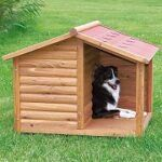 Best 5 Outdoor Dog Houses For Sale In 2020 Reviews + Guide