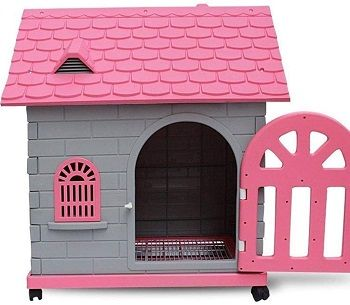 Cages Dog House