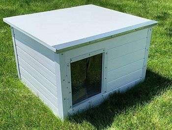 Cove Products The Vinyl Cube Dog House review