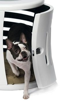 DenHaus ZenHaus Indoor Dog House review