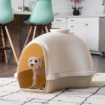 IRIS USA Large Igloo Shaped Dog House review