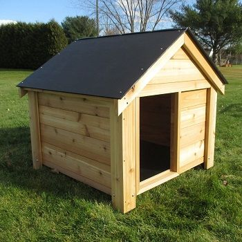 Infinite Cedar The Ultimate Dog House review
