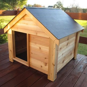 Infinite Cedar The Ultimate Dog House