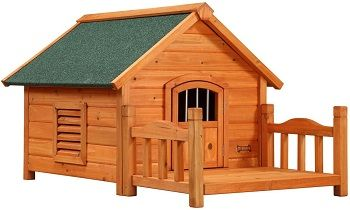 Pet Squeak Dog House review