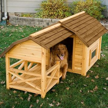dog-house-with-fence