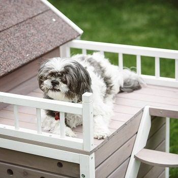 dog-house-with-porch