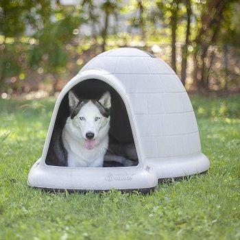 igloo-dog-house